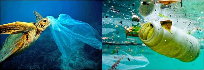 lixo plástico no oceano